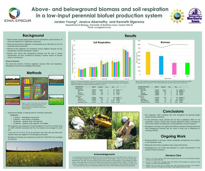 Above-and belowground biomass and soil respiration in a low input perennial biofuel production system